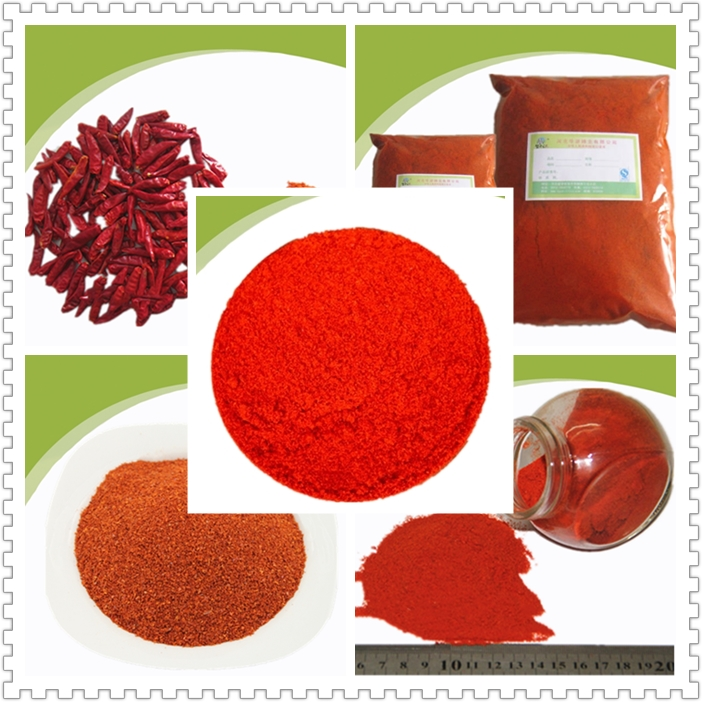 Spicy Chill Pepper Powder 2018 newly Crop