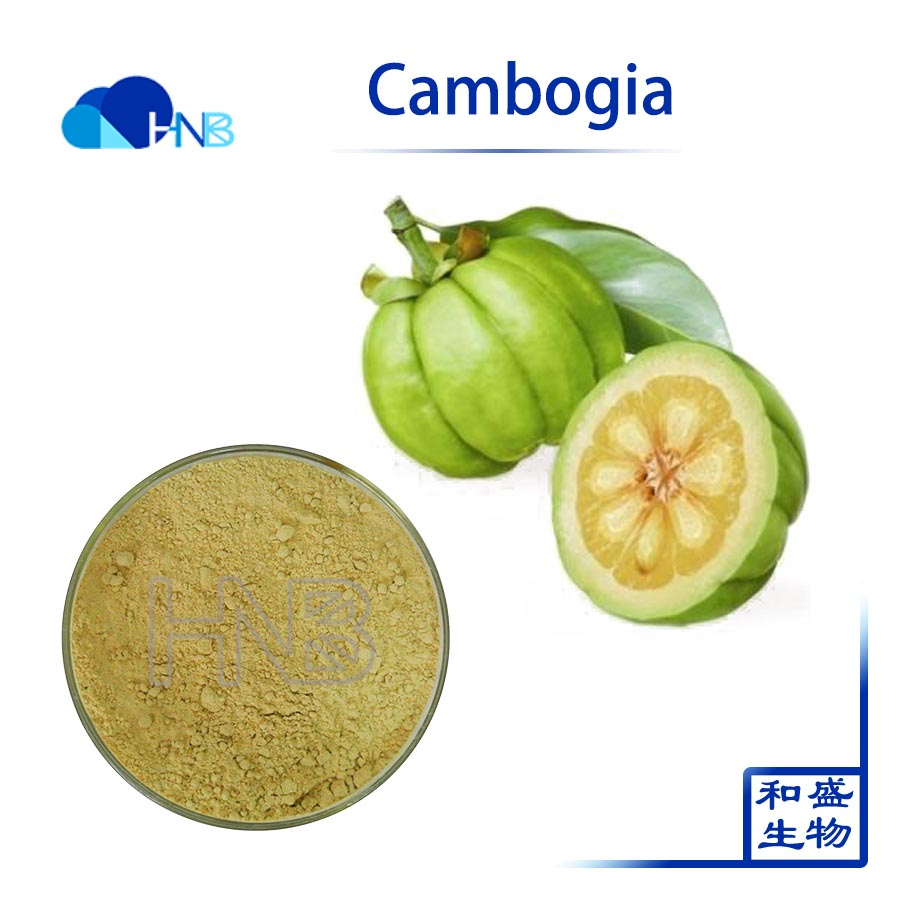 Hnb Supply Pure Natural Garcinia Cambogia Powder Buy Garcinia