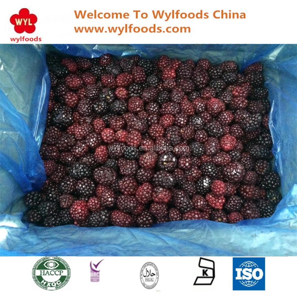 2017 New Crop Delicious Grade A and B Iqf Frozen blackberry