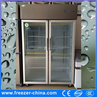 Single-temperature style double 2 doors side by side stainless steel reach in commercial freezer for home kitchen