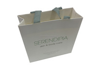 Luxury High quality Branded Retail Paper bag, printed custom made shopping paper bags with your own logo