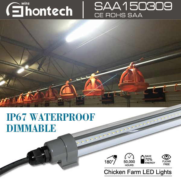 led lighting solution for poultry house, coop/ chicken shed/ hen house with led lighting control system