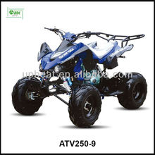 Raptor <span class=keywords><strong>250cc</strong></span> course <span class=keywords><strong>ATV</strong></span>/sport <span class=keywords><strong>ATV</strong></span>/<span class=keywords><strong>250cc</strong></span> quad