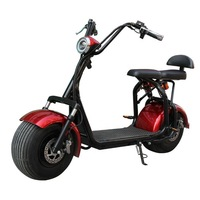 1500w max speed 65km/h distance 60km brushless motor 18 inch 2 wheel Adult Citycoco scooters C1