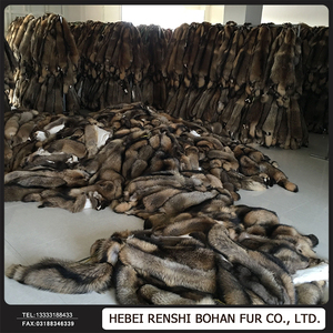 Wholesale Dyed Whole Skin Racoon Fur Skin /Racoon Dog Fur Plate/Raw Racoon Fur Material