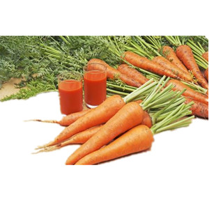 fresh organic carrots suppliers /wholesale cheap carrots