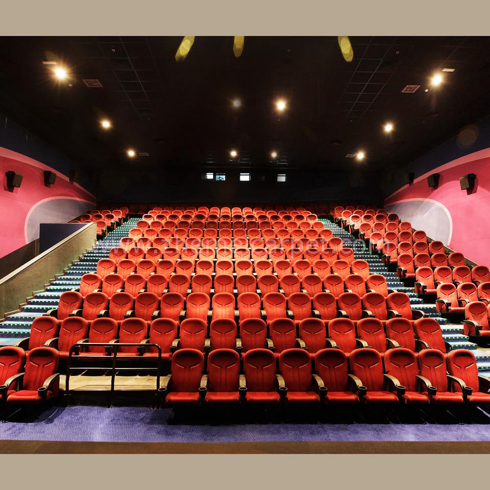 IMAX 3D Cinema Theater Wall to Wall Nylon Printing Carpet