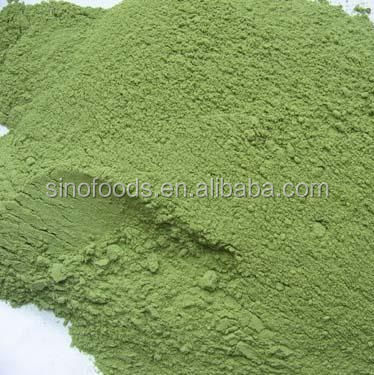 High Quality Ad Broccoli Powder Vegetable Fat Filled Milk Powder ...