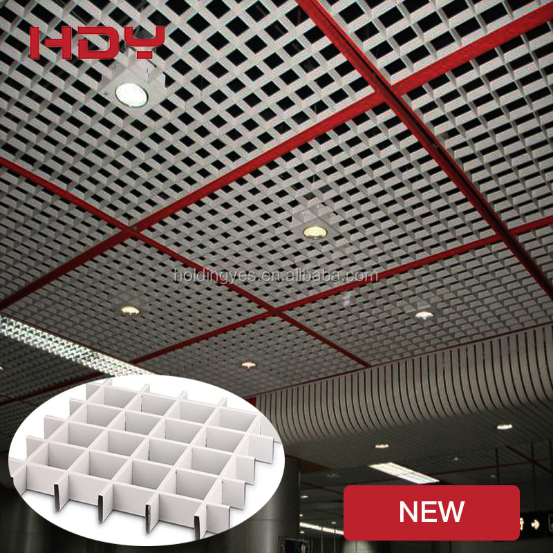 SGS Fantastic 3D Aluminum restaurant false ceiling designs