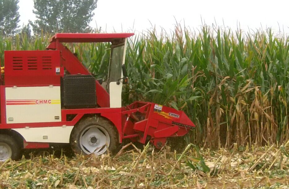 Tractor type diesel engine corn combine harvester for USA,Brazil