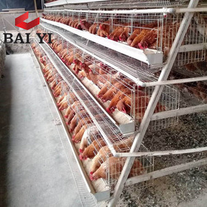 alibaba china market factory price egg chicken layer cage/poultry shed layer cage