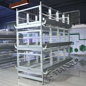 Tianrui Design Poultry Equipment Breeder House Wire Chicken Bird Breeding Cage