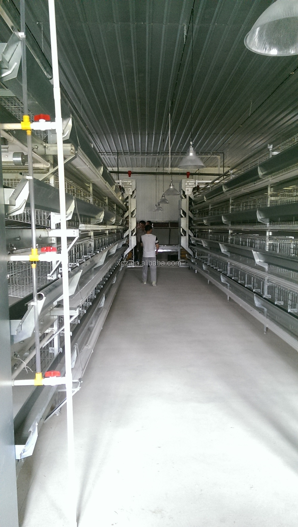 Poultry Chicken Farm Used Broiler Cage With Free Chicken House and Equipment Design