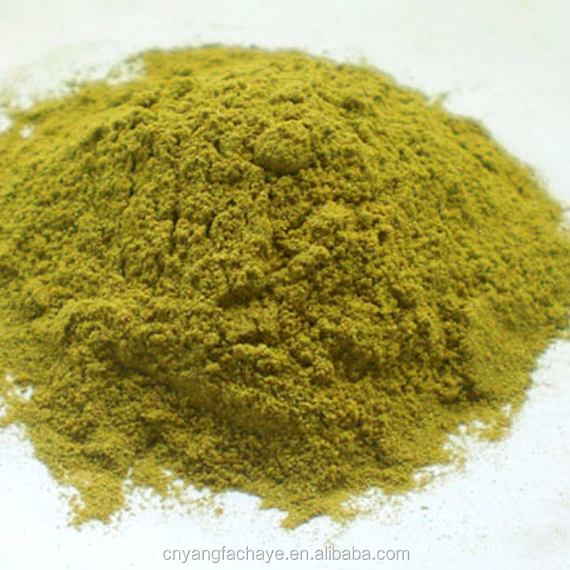 Excellent Quality Sweet Tea Leaf Extract Rubusoside Powder