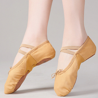 Dancing Accessories Best Quality Ballet Shoes for Training