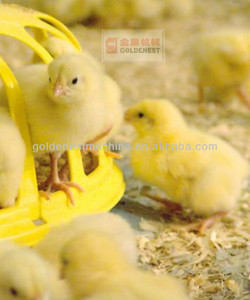 industry recommended poultry farming equipment feeder pan
