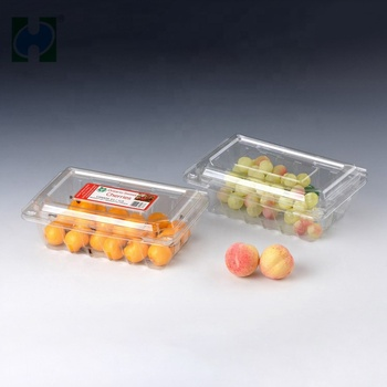 Plastic Fruit Apple Punnet Home Using Plastic Fruit Food Container Plastic Dry Fruit Box