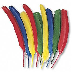 Creativity Street : Quill Feathers, Assorted Colors, 24 Feathers per Pack -:- Sold as 2 Packs of - 24 - / - Total of 48 Each