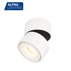 Super Quality cob Dimmable Fush Mounted Ceiling Lamp,Ceiling Led Lighting