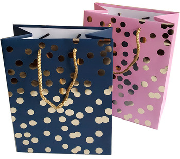 Art paper shopping gift bag with hotstamp