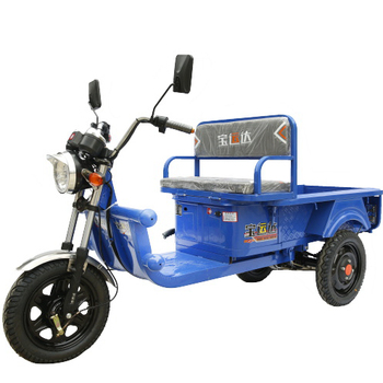 Three wheel trike for adults something is