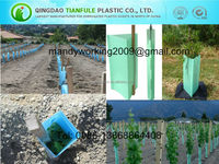 PP hollow plastic sheet for plant protecting