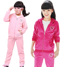 2013 new autumn-summer children clothing sets baby girl velet sports suit kids twinset / sportswear — hoodies+ pants 2 pieces