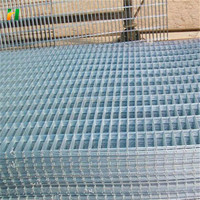 china manufacturer heavy gauge galvanized welded wire mesh panel/3d welded wire mesh/cheap galvanized welded rabbit cage