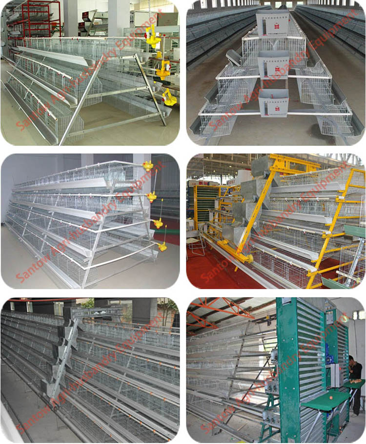 Welded Wire Mesh Poultry Cage Factory Price Battery Chicken Cage Best Quality Chicken Use Poultry Cage