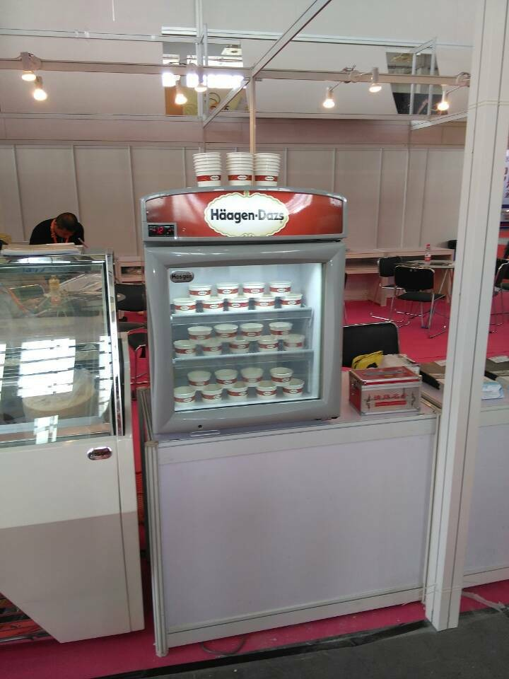 Haagen Dazs Ice Cream Small Display Refrigerator View Ice