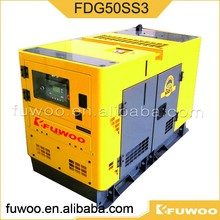 Fuwoo Manufacture Fdg50ss3 40kw Natural Gas Generator Set