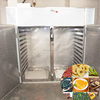 Stainless steel tray dryer fish drying oven