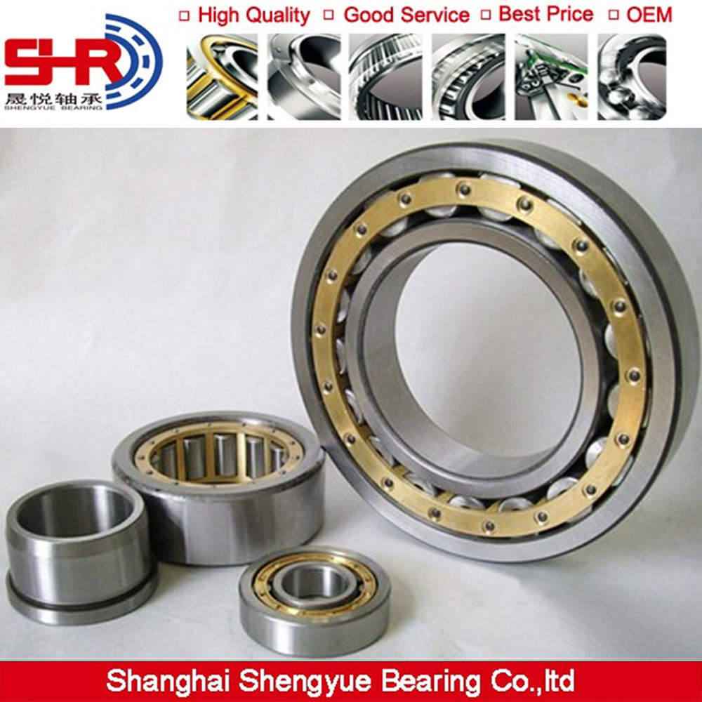 N NU NJ NF NUP SL all types of bearing manufacturing machinery Cylindrical Roller Bearing