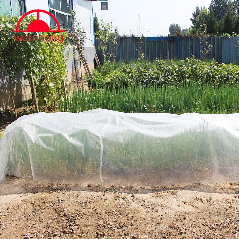 pp spunbond nonwoven greenhouse for protecting plants in winter