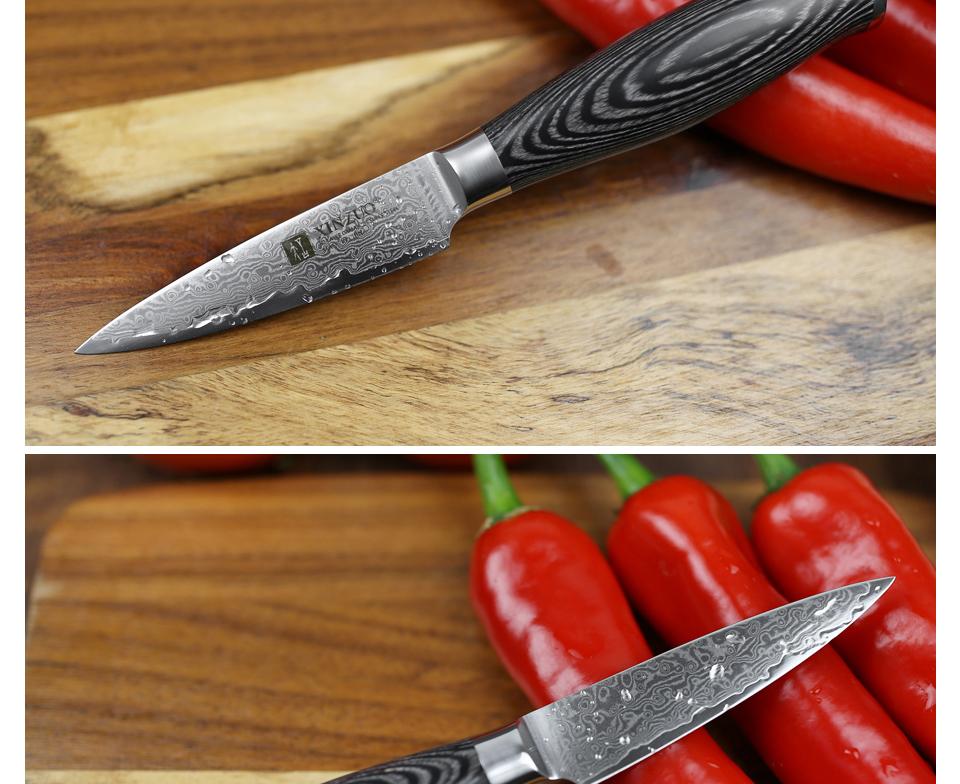 """HTB1s.tWg3vD8KJjy0Flq6ygBFXaV - XINZUO 3.5"""" inch Paring Knife 67 layers Japan Damascus Steel Peeling Fruit Knife"""
