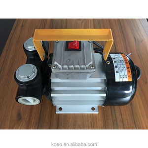 Universal Portable Kerosene Suction Pump, Small Engine Fuel Pump Diesel, Powerful 220v 110v Electric Fuel Oil Transfer Pump