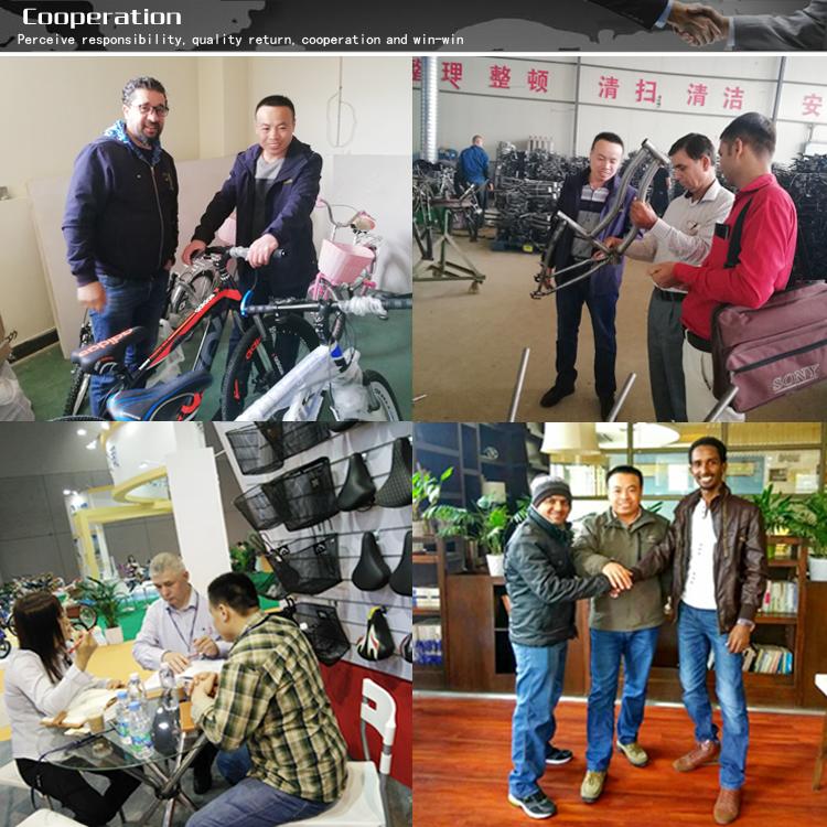 Trung Quốc Bán Buôn Giá Rẻ Thể Thao Chất Lượng Cao MTB 26 Inch 24 Tốc Độ Nhôm T-Loại Nội Thất Dòng Xe Đạp Xe Đạp Leo Núi xe Đạp