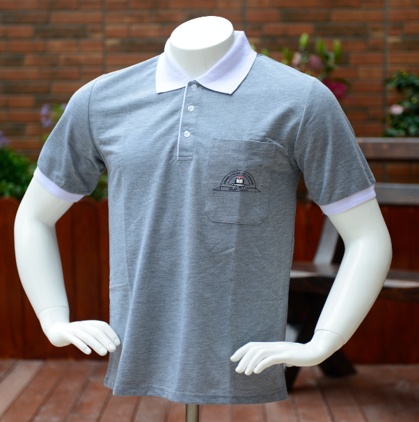 Embroidery polo shirts for men
