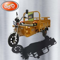Three wheel Open door electric auto cargo tricycle with cooling box