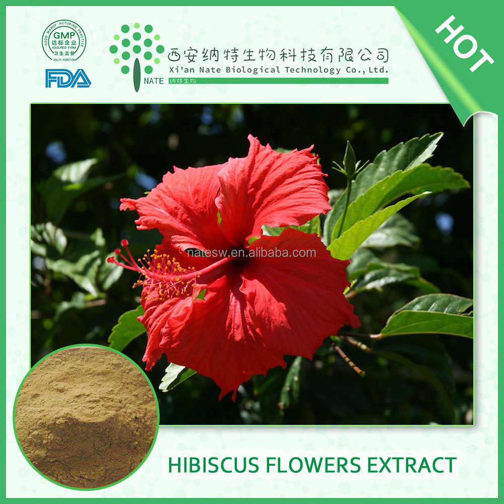 Hibiscus Syriacus Extract Hibiscus Syriacus Extract Suppliers And
