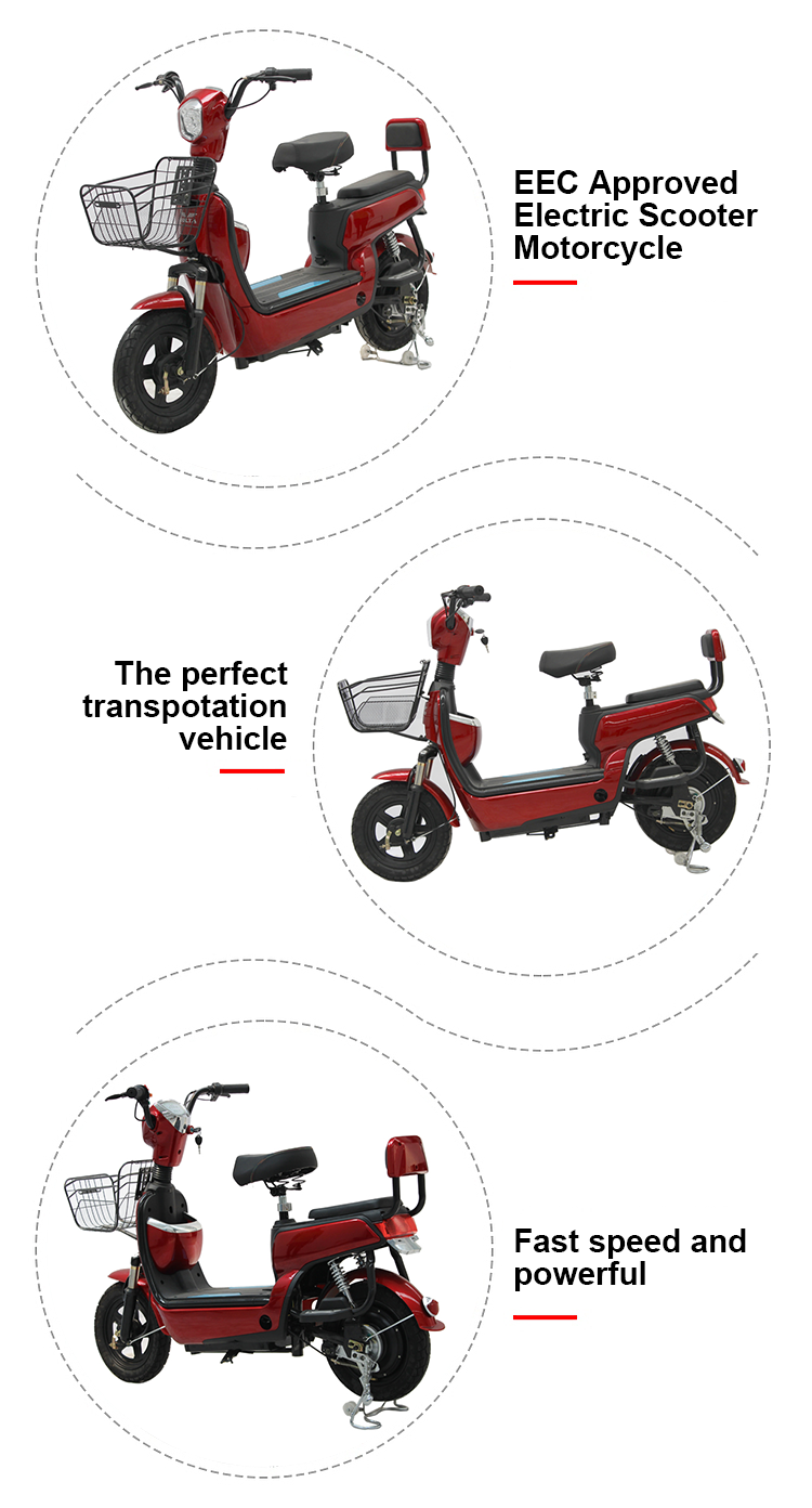 China city outdoor Riding Travel With pedal electric bike