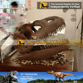 Dinosaur fossile skull replica inosaur fossil exhibition skeleton draws resin from model