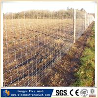 new design sheep and goat farming with low price