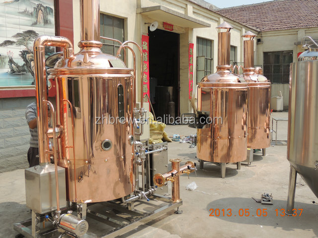 500l Electricity Steam Lpg Gas Direct Fire Heating Beer
