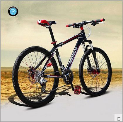 Warrior650 mountain bike