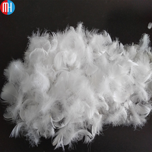 Safety and Health washed white duck goose feathers wholesale