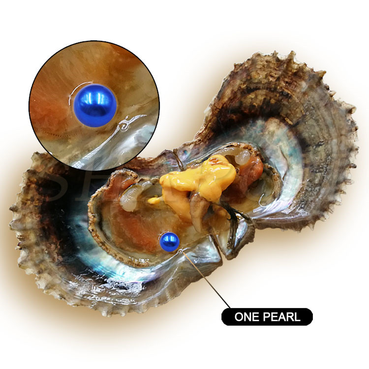 Fantastic Wholesale 6-7mm Vacuum-packed Royal Blue Cultured Round Sea Akoya Oyster With Pearl