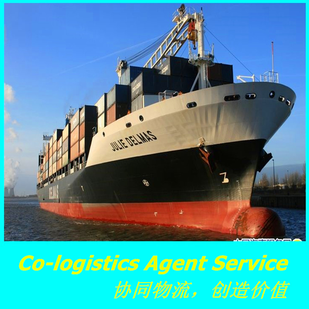 cargo logistics sea shipping price from china to Saint Etienne ---------Tony(Skype:tony-dwm)