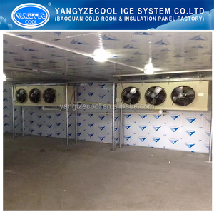 -40 C Blast Room deep freezer cold room manufacture malaysia made in china cold room storage