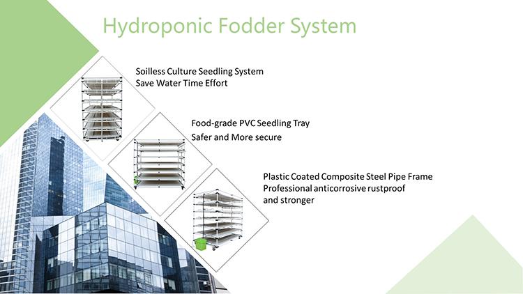 hydroponic system 01